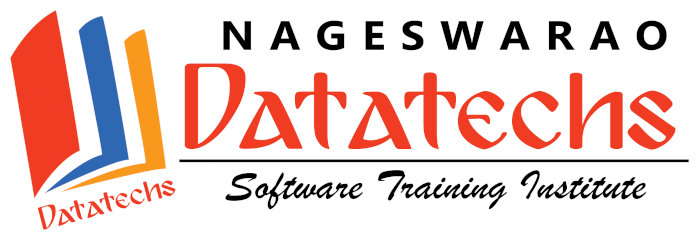 Nageswarao Datatechs Software Training Institute Logo